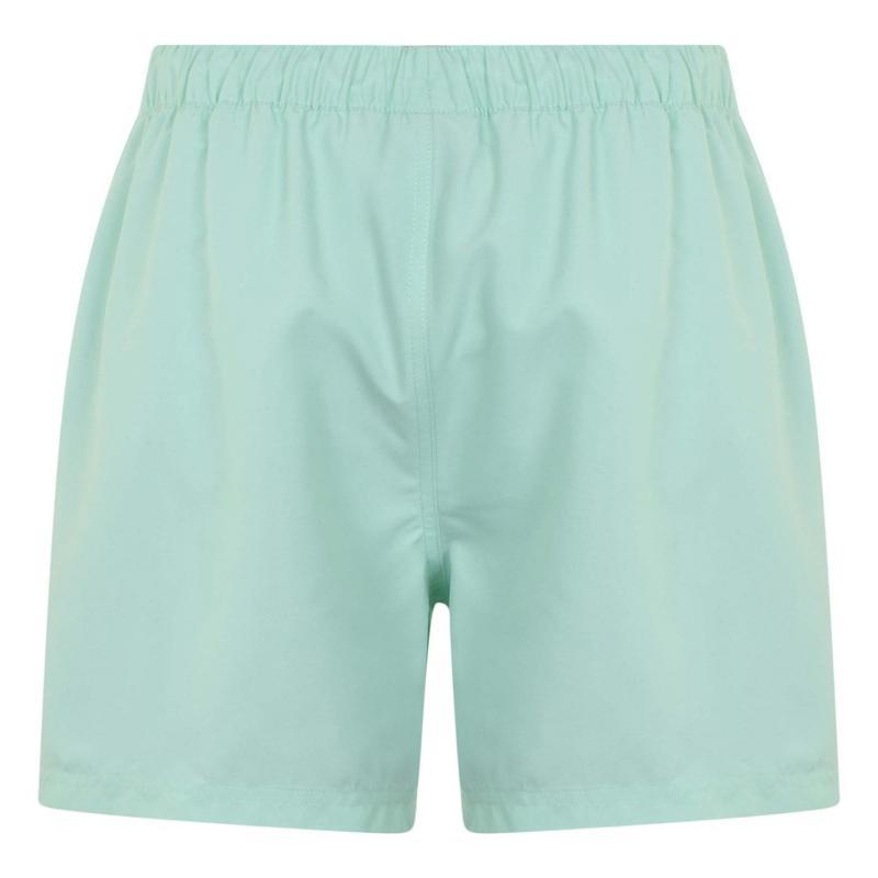 Plavky Hot Tuna Logo Shorts Mens Aqua